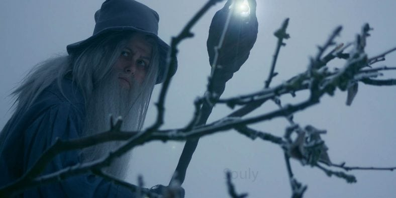 Gandalf der Graue Cosplay